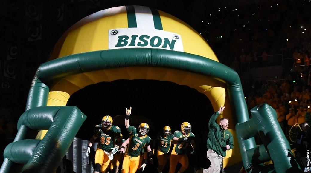 bison-enter
