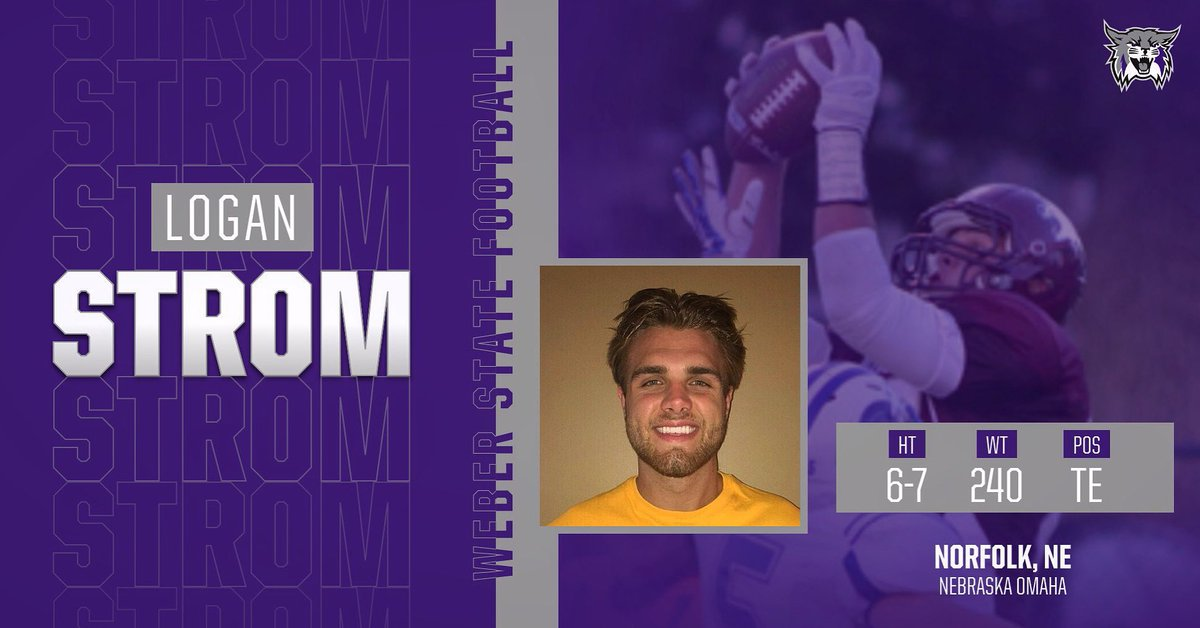 Weber State Te Logan Strom Hopes To Follow The Antonio Gates Path To Becoming A Starter The College Sports Journal